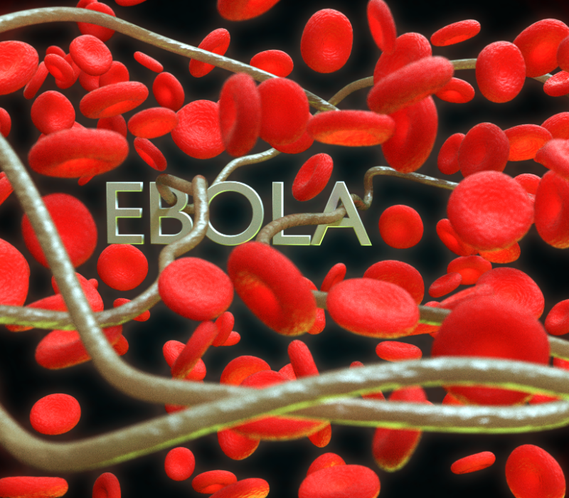 is ebola only deadly to the 2018-08-08 dakar, senegal (ap) — ebola vaccinations began wednesday for congo's latest outbreak of the deadly virus that has already claimed at least nine liveshealth officials have warned that containing the outbreak in north kivu.