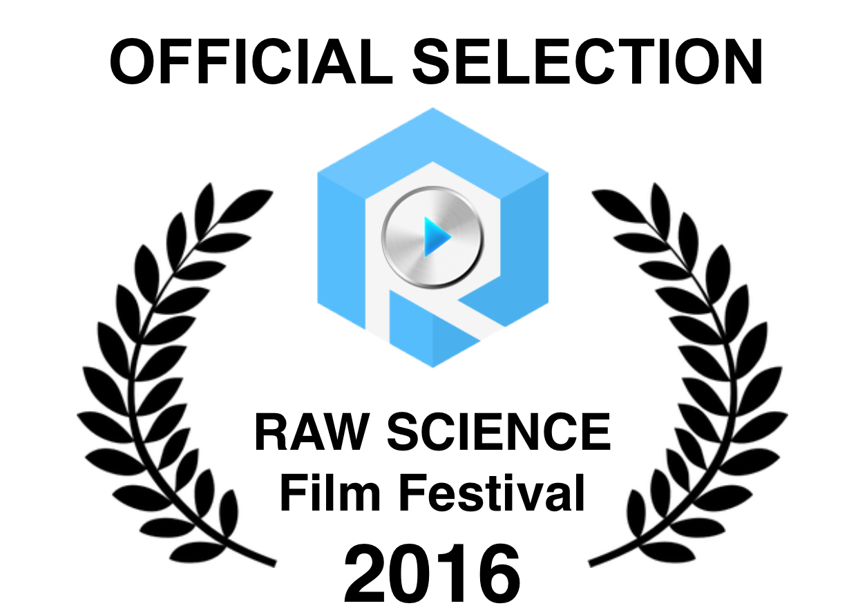rsff2016-official-selection